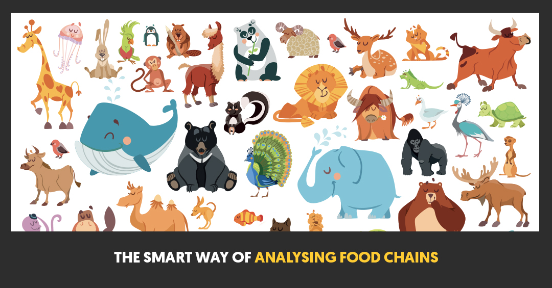 The Smart Way of Analysing Food Chains