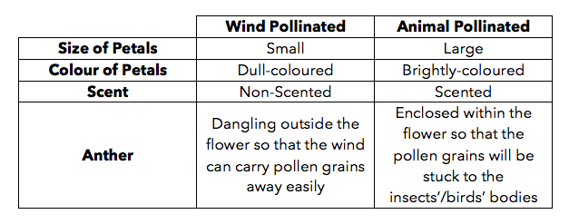 Pollination VS Seed Dispersal – What's The Difference?! – table