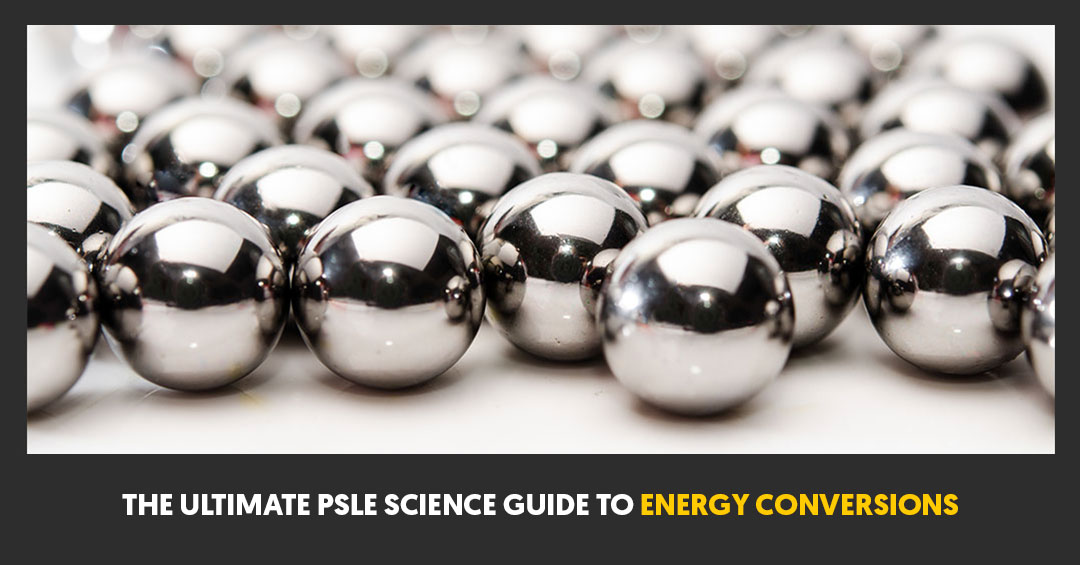 The Ultimate PSLE Science Guide To Energy Conversions